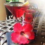 Hibiscus Martini at Samuel's Andover